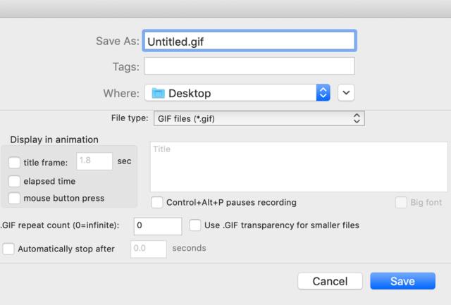 録画開始前に表示されるオプション画面